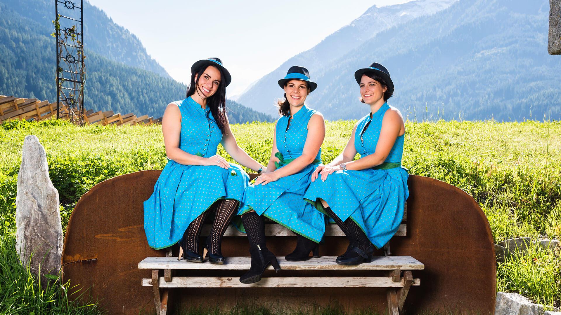 Die Hollerstauden Band